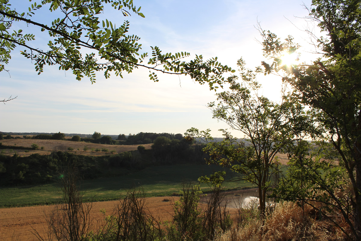 paesaggio estivo via valle di perna 315 roma
