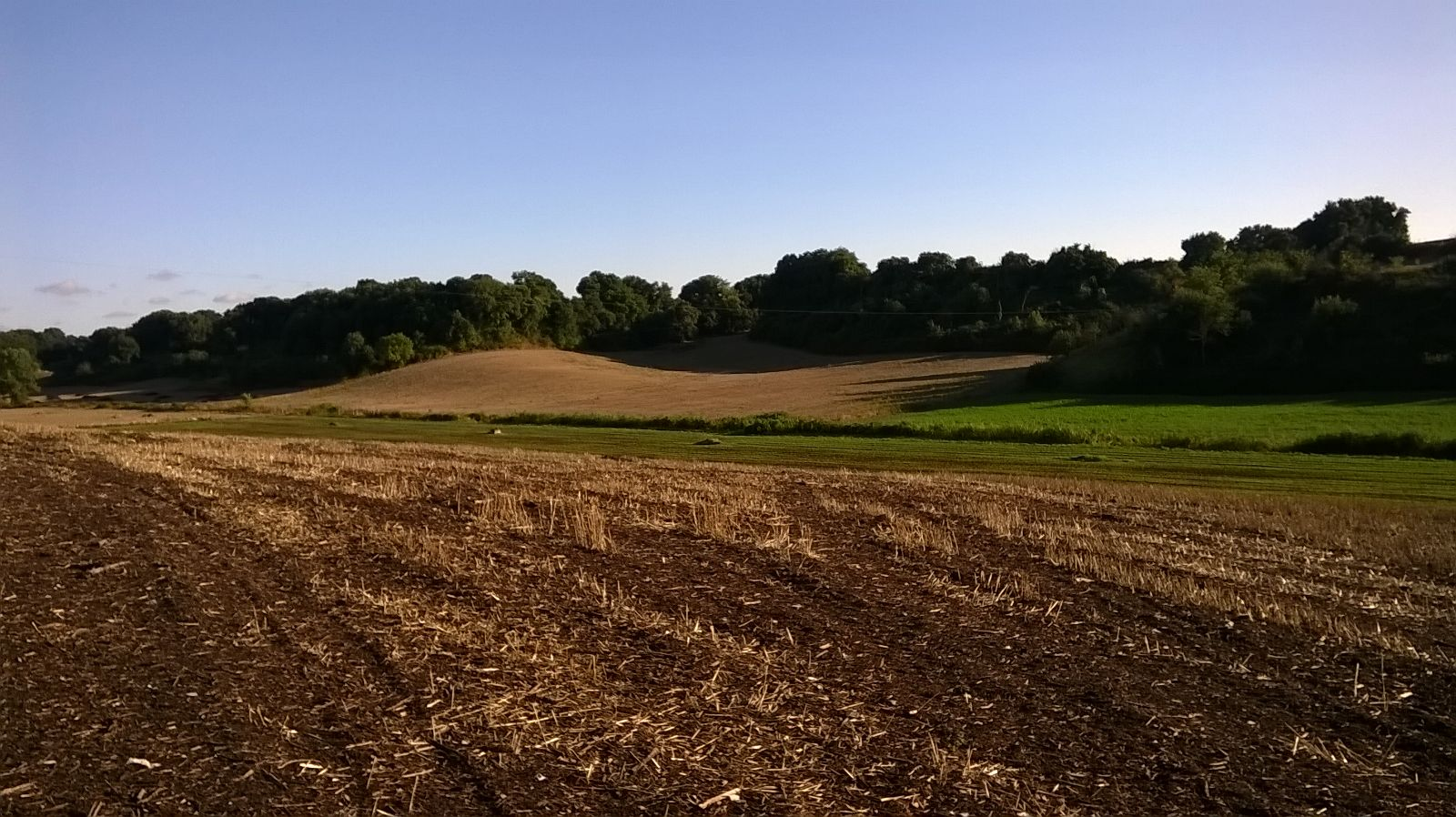 Paesaggio riserva natura decima malafede roma sud