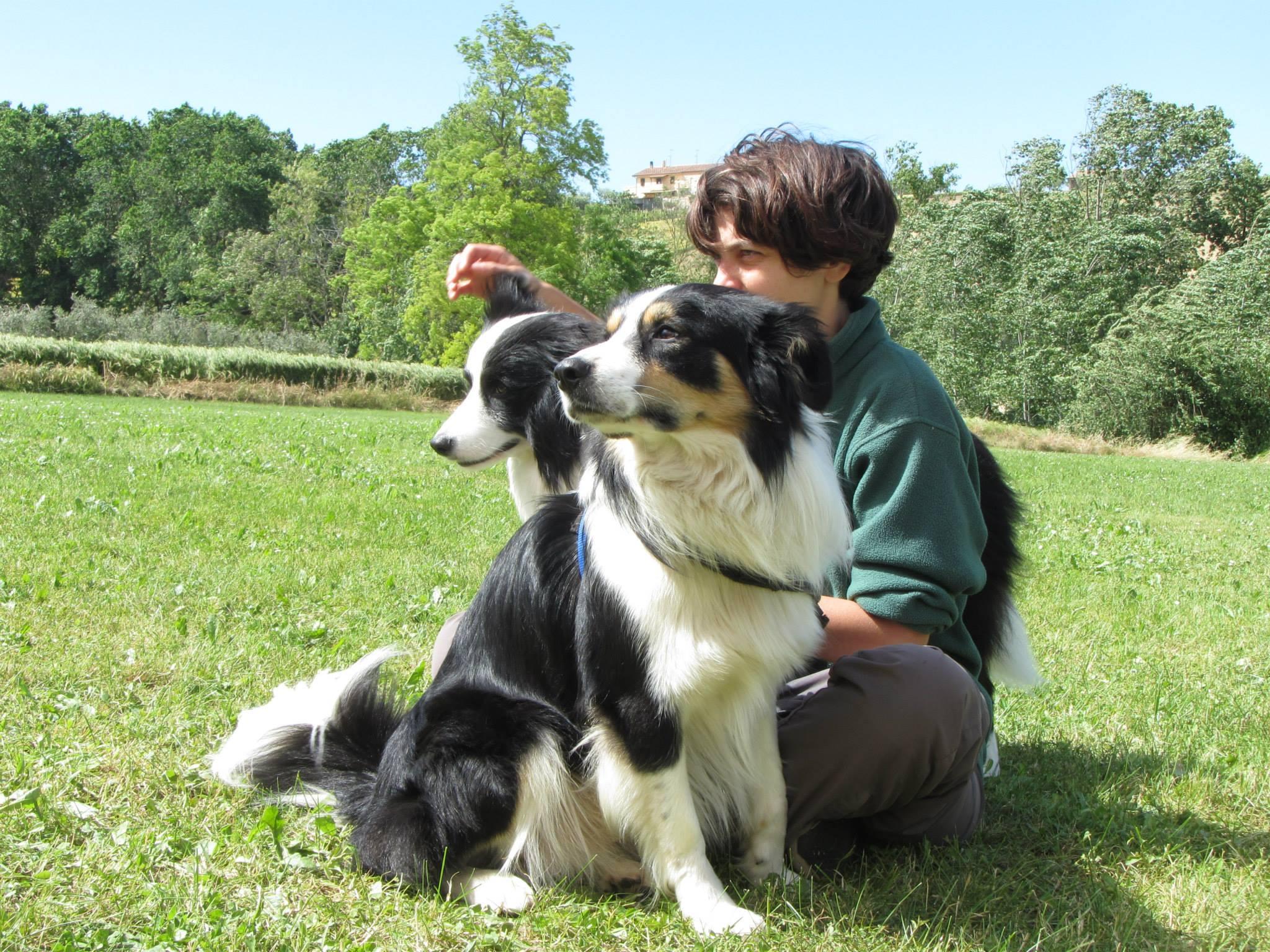 Barking Dogs Centro Cinofilo Roma Spinaceto