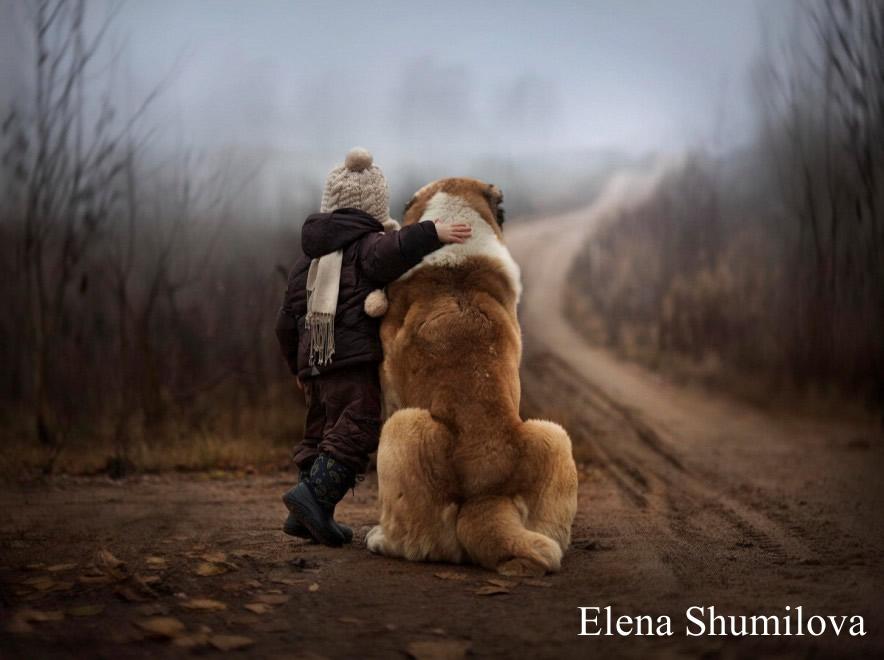 A ognuno il suo....ogni cane è se stesso! - Barking Dogs
