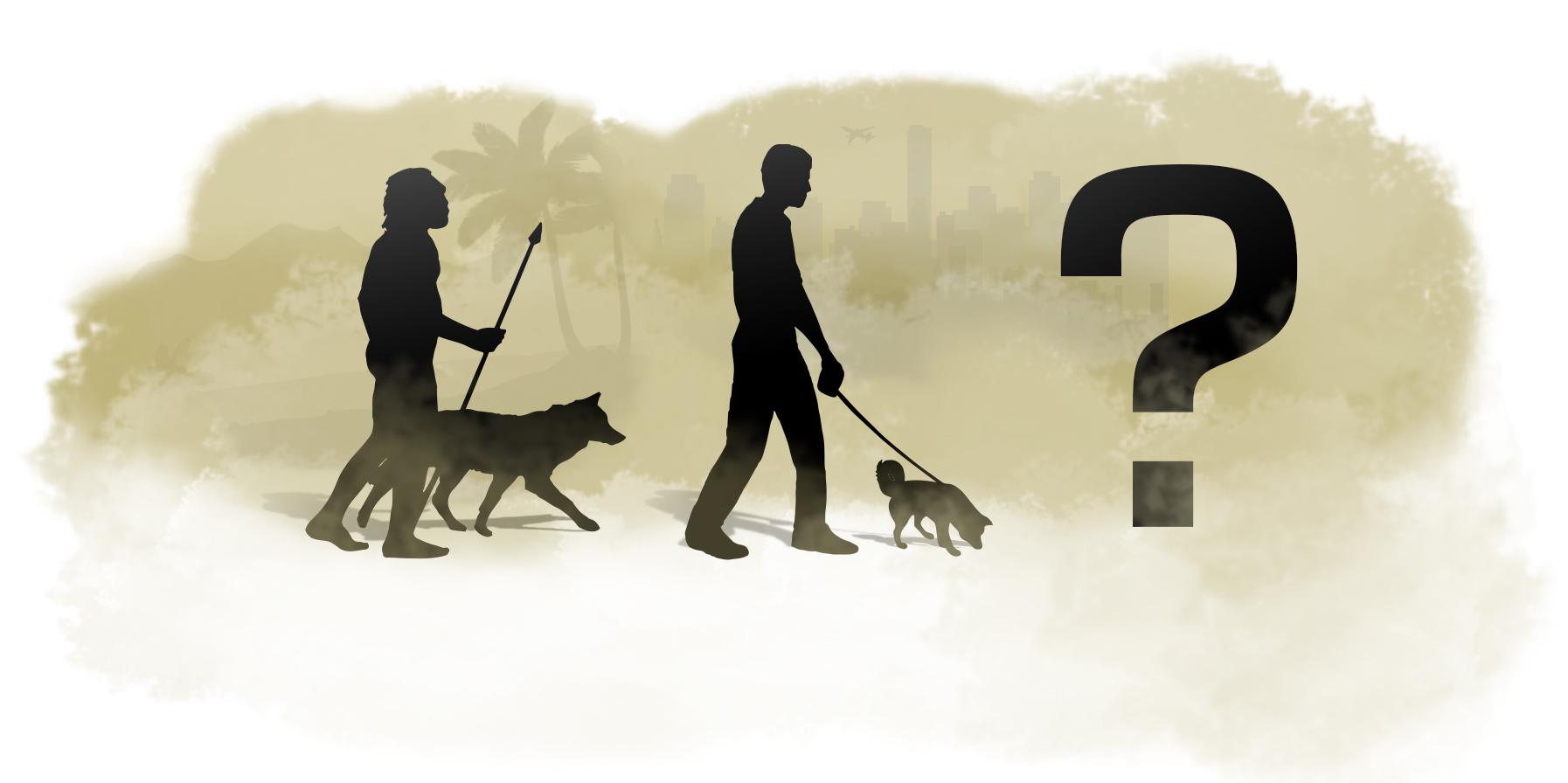corso cultura cinofila roma il cane ieri oggi e domani