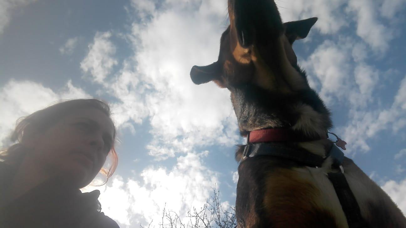 Bud al Centro Cinofilo Roma sud Barking Dogs
