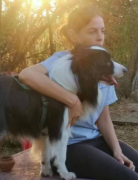cuccioli e non solo educatore cinofilo francesca trani roma sud